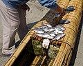 Pescado Fresco - caballito totora.jpg