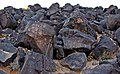 Petroglyph National Monument 008 by Samat Jain.jpg