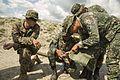 Philippine, U.S. Marines share knowledge about ordnance disposal 141206-M-PU373-029.jpg
