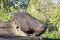 Phu Pha Thoep National Park (MGK21328).jpg