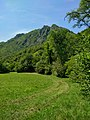 Pian Sciresa nel Parco del Monte Barro bella vista.jpg