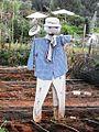PikiWiki Israel 15091 Scarecrow.jpg