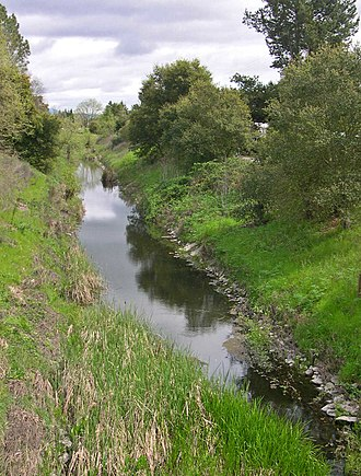 Piner Creek - Piner Creek before its confluence with Santa Rosa Creek, on the Santa Rosa Plain