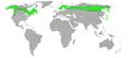 Pinicola enucleator-Map.png