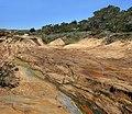 Point Lobos 20 at 04-07-2010.jpg