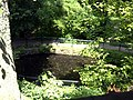 Pond - panoramio (6).jpg
