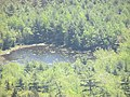 Pond seen from Cadillac Mountain image 2.jpg