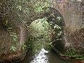 Pont centenaire construit avec des bambous de chine à Fongo-Tongo à Dschang.jpg