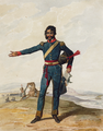 Portuguese Army, 10th Cavalry Regiment (1812) - Denis Dighton.png