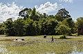 Pre Rup, Angkor, Camboya, 2013-08-16, DD 01.JPG