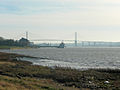 QE bridge from Rainham Marshes 11-01-2009.jpg