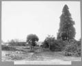Queensland State Archives 3121 Clearing Site for southern approach at Kangaroo Point Brisbane c 1935.png