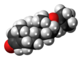Quinbolone molecule spacefill.png