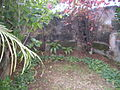Quinta do Descanso, Santa Luzia, Funchal - 29 Jan 2012 - SDC15781.JPG