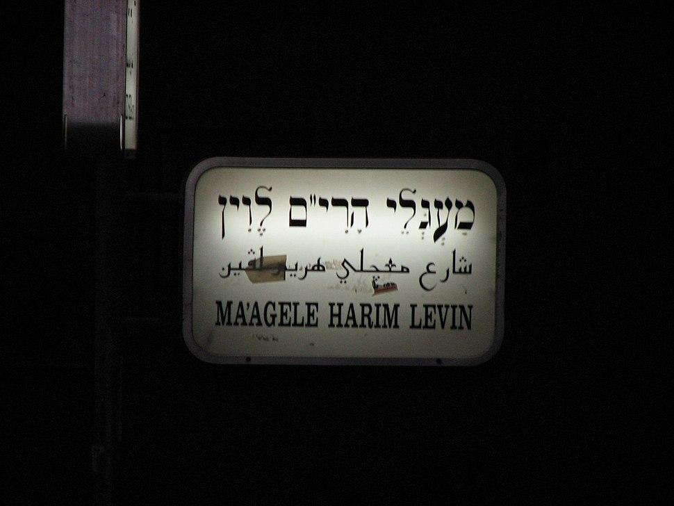 R' Levin Circle Street Sign - Sanhedria HaMurchevet