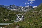 Réou d'arsine Parc national des Ecrins.jpg