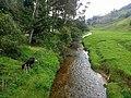 Río Chico en Belmira.jpg