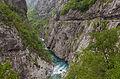 Río Moraca, norte de Podgorica, Montenegro, 2014-04-14, DD 16.JPG