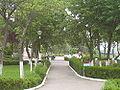 RO CL Calarasi parc.jpg
