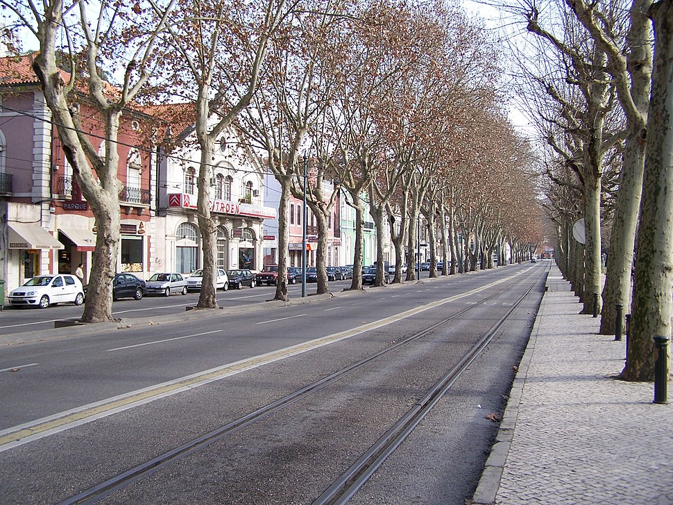 Ramal de Lousa connection between Coimbra-Parque and Coimbra-A