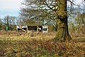 Ramshackle shed, Charlwood - geograph.org.uk - 1756378.jpg