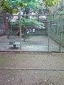 Rani Baugh Bombay (Jijamata Udyan Mumbai) - panoramio - Camaal Mustafa Sikan… (10).jpg