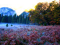 Red meadow (3025920521).jpg