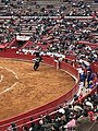 Rejoneador in Plaza Mexico.jpg