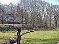 Renaturierung Eselspfad - panoramio.jpg