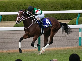 Resistencia (horse) Japanese Thoroughbred racehorse