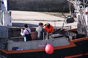 Retour de la pêche à la seiche du fileyeur Jason IV (4).JPG