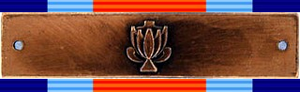 Military Merit Medal (South Africa) - Military Merit Medal and Bar