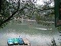 Ride in the lake.jpg