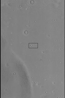 Ring mold crater type of crater on Mars
