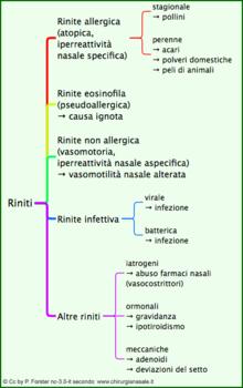 Classificazione di riniti