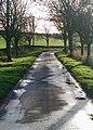 Riplingham Road, Skidby - geograph.org.uk - 624353.jpg