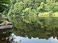 River Eden - geograph.org.uk - 195908.jpg
