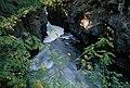River Entering Gorge, Rogue River-Siskiyou National Forest (36969016591).jpg
