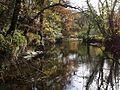 River Tamar - geograph.org.uk - 610084.jpg