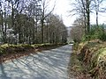 Road between Glenmalure and Laragh, Co. Wicklow - geograph.org.uk - 1217224.jpg
