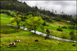 Road to Choachi, Colombia (7654907444).jpg