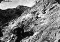 Robert C. Thorne at Glyptodon Prospect (3525669569).jpg
