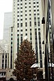 Rockefeller Tree.jpg