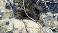 Rocks 4 (24769462237).png