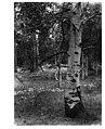 Rogger Meadow-Oregon-1946.jpg