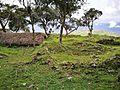 Ruïnes de Kuelap sota la vegetació.jpg