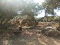 Ruines Romaines Tipaza 24.jpg