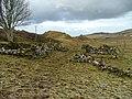 Ruins at Balnaknock - geograph.org.uk - 1106791.jpg