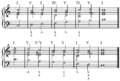 Rule of the octave major scale.png