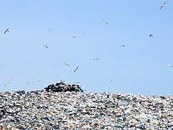 rusko jäteasema